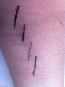 Smudge Test; top to bottom Designer Brands, Revlon Eye Pen, Revlon Liquid Eyeliner, Illamasqua.